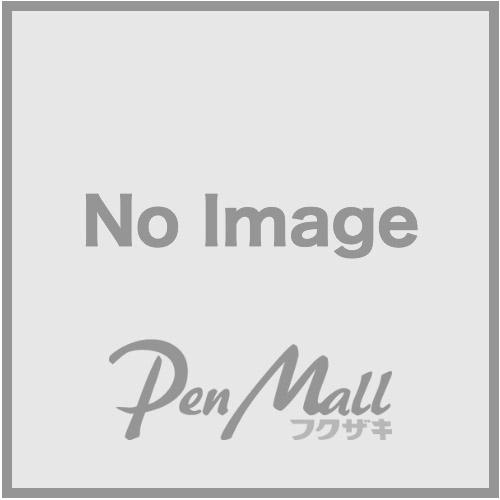 印鑑付きボールペン ネームペン・ポケット(シルバー)の画像